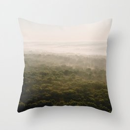 Kentucky from the Air II Throw Pillow