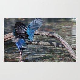 Swamphen (Purple Gallinules) Rug