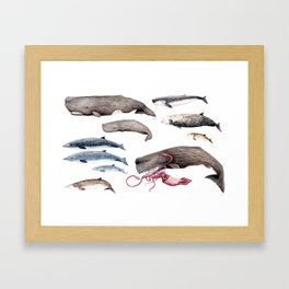 Deep sea whales Framed Art Print