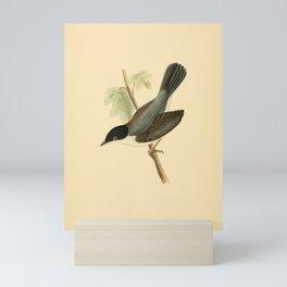Black-headed Sardinian Warbler Mini Art Print