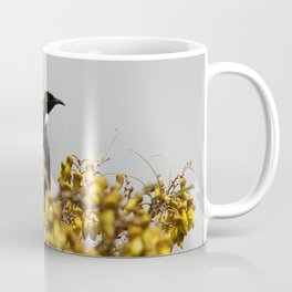 New Zealand Tui bird Coffee Mug