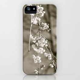 Stages of Spring iPhone Case