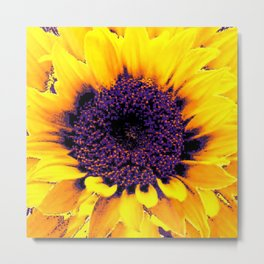 Purple Floral Center Of Butter Yellow Sunflower Metal Print