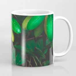 Nature wonder Coffee Mug