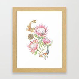 King Protea and Fish Watercolor Framed Art Print