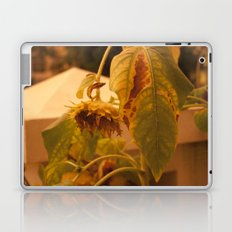 The Sun has Set and tomorrow, God willing, it will rise again [SUNFLOWER] [WILTING] [YELLOW SKY]  Laptop & iPad Skin
