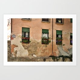 Windows in Granada Art Print