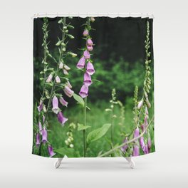 Wild foxgloves (Digitalis purpurea). Norfolk, UK. Shower Curtain