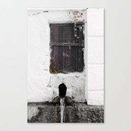 ariadni Canvas Print
