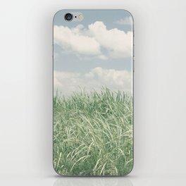 sugar cane field 2 iPhone Skin