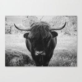 Oh!Tigger Canvas Print
