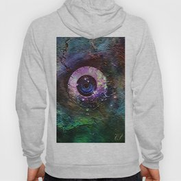 """ If the eye does not contemplate, the eye will not see. "" Hoody"