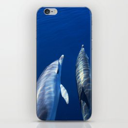 Playful and friendly dolphins iPhone Skin
