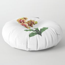 Hummingbird & Phalaenopsis Floor Pillow