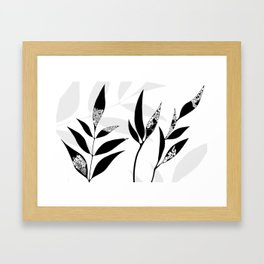 Shadow Play #2 Nature's Best Framed Art Print