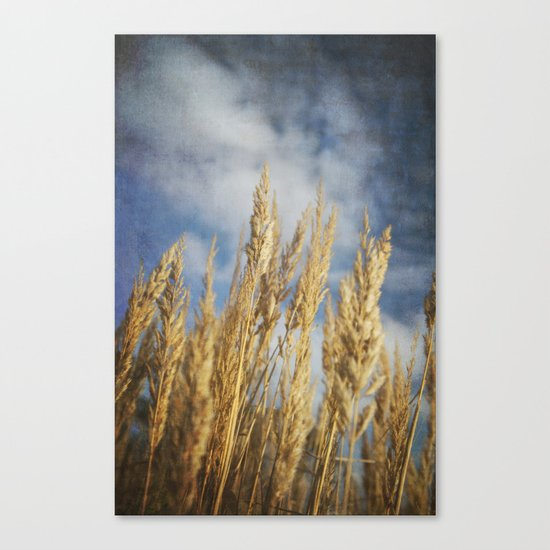 Late Summer Canvas Print