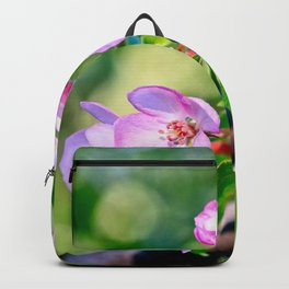 Bunch of pink crabapple flowers on a tree. Green background Backpack