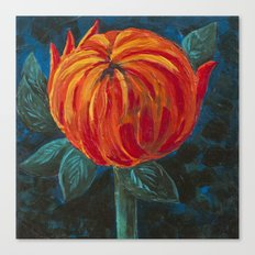 Chrysanthemum Bud Canvas Print