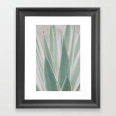 faded agave Framed Art Print