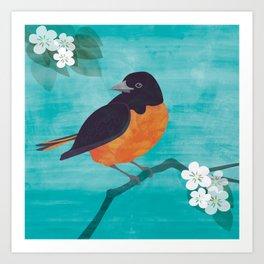Oriole Bird on Teal Art Print