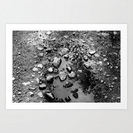 Pebble Puddle Art Print