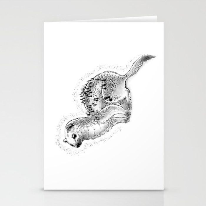 Weasel Mountain Stationery Cards