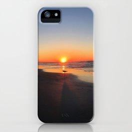 Lone Gull at Sunrise iPhone Case