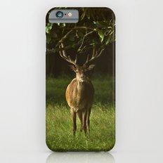 Deer Slim Case iPhone 6s