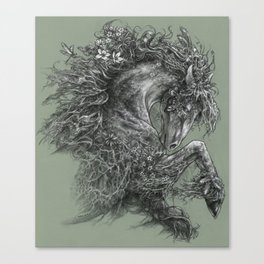 Moss Lord Canvas Print