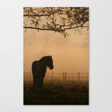 a pony Canvas Print