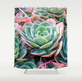 Succulent Garden Vibrant Pastel Shower Curtain