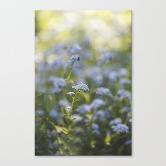 Forget-me-not meadow Spring Flower Flowers Floral on #Society6 Canvas Print