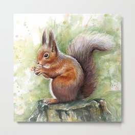 Squirrel and Nut Forest Animals Watercolor Metal Print