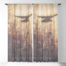 Light and Dark Sheer Curtain