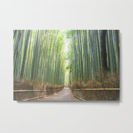Empty Path Arashiyama Bamboo Forest Metal Print