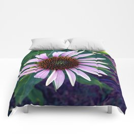 Echinacea Comforters