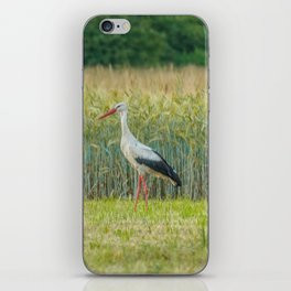 White stork iPhone Skin