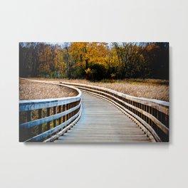 Walkway In A Field Metal Print