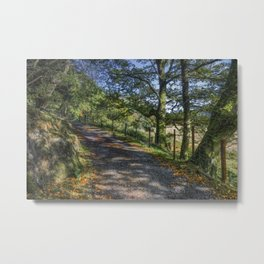 Autumn Countryside Metal Print
