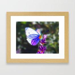 Butterfly on the Lavender Framed Art Print