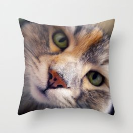 Siberian cat. The Cleopatra's nose. Throw Pillow