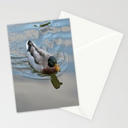 Mallard duck swimming in a turquoise lake 1 Stationery Cards