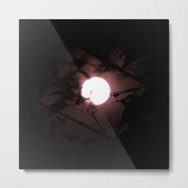 Light in the Dark Night Metal Print