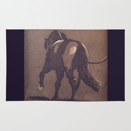 Lunging / Horses Rug