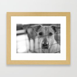 Are You The One? Framed Art Print