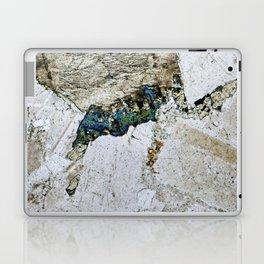 Dolerite 05 - Diving Platypus Laptop & iPad Skin