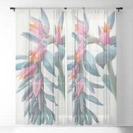 Succulent Cluster Sheer Curtain