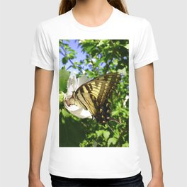 Seasonal Butterfly T-shirt