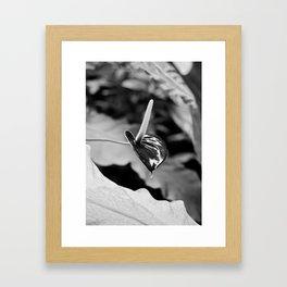 Vegetal Portrait I: Chocolate Flower Framed Art Print