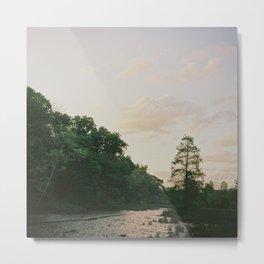 Swampland from Roosevelt Island, Washington DC Metal Print